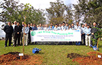 Tree Planting Day in Brazil