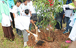 Tree Planting Day in Indonesia